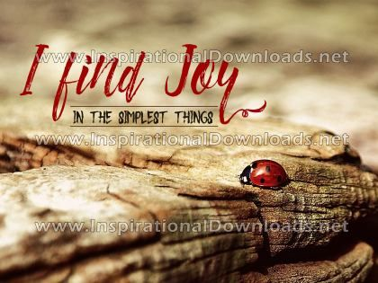 Finding Joy by Positive Affirmations (Inspirational Downloads)