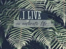 Live An Authentic Life by Positive Affirmations (Inspirational Downloads)