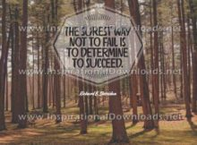 Determine To Succeed by Richard Sheridan (Inspirational Downloads)