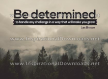 Handle Any Challenge by Les Brown (Inspirational Downloads)