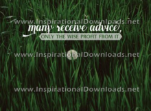 Only The Wise Profit From by Harper Lee (Inspirational Downloads)