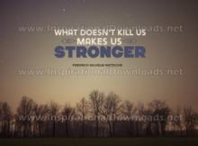 Makes Us Stronger by Friedrich Wilhelm Nietzsche (Inspirational Downloads)