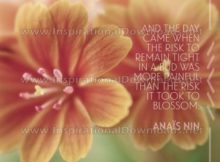 Inspirational Quote: Risk It Took To Blossom by Anais Nin (Inspirational Downloads)