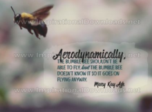 Goes On Flying Anyway by Mary Kay Ash (Inspirational Downloads)