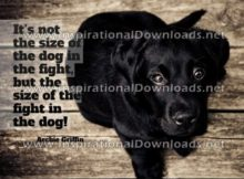 Inspirational Quote: Size Of The Fight by Archie Griffin (Inspirational Downloads)