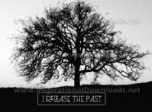 Release The Past by Positive Affirmations (Inspirational Graphic Quote by Inspirational Downloads)