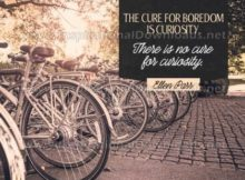 Cure For Boredome by Ellen Parr (Inspirational Graphic Quote by Inspirational Downloads)