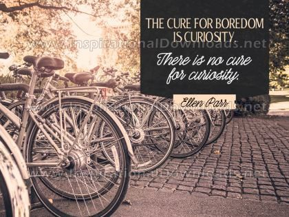 Cure For Boredom by Ellen Parr (Inspirational Graphic Quote by Inspirational Downloads)