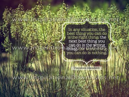 Thing You Can Do by Theodore Roosevelt (Inspirational Graphic Quote by Inspirational Downloads)