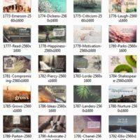 1708 Series Album