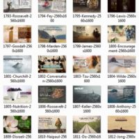 1709 Series Album