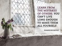 Learn From Mistakes of Others by Eleanor Roosevelt Inspirational Graphic Quote