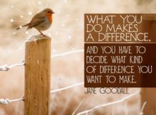 Difference You Want To Make by Jane Goodall Inspirational Graphic Quote