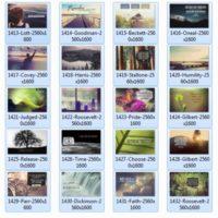0116 Series Album
