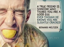 True Friend by Bernard Meltzer Inspirational Graphic Quote