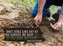 The Seeds You Plant by Robert Louis Stevenson Inspirational Graphic Quote