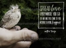 Spread Love Everywhere You Go by Mother Teresa