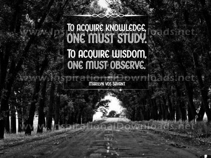 Acquire Wisdom by Marilyn Vos Savant Inspirational Quote Graphic