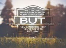 Live Now by Joan Baez Inspirational Quote Graphic