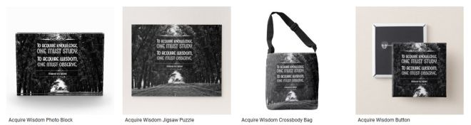 Acquire Wisdom Inspirational Quote Graphic Customized Products