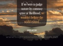 To Judge Nature Inspirational Quote Graphic by Annie Dillard
