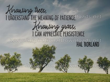 Knowing Trees And Knowing Grass Inspirational Quote Graphic by Hal Borland