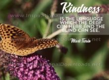 Kindness Is The Language Inspirational Quote Graphic