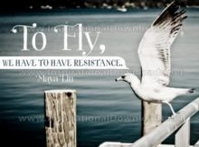 To Fly Inspirational Quote Graphic