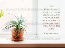 What You Have In Life Inspirational Quote Graphic
