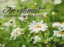An Optimist Inspirational Quote Graphic