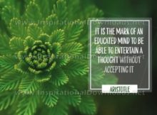 Mark Of An Educated Mind Inspirational Quote Graphic