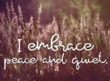 Embrace Peace And Quiet Inspirational Quote Graphic