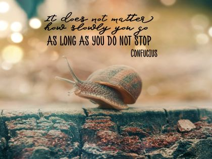 Do Not Stop by Confucius Inspirational Quote Graphic