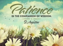 Companion of Wisdom by Saint Augustine Inspirational Graphic Quote Poster