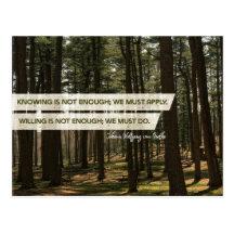 Must Apply And Must Do by Johann Wolfgang Von Goethe Inspirational Postcard (Custom Inspirational Postcard)