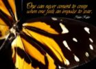 Impulse To Soar by Helen Keller Inspirational Quote Graphic
