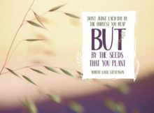 Seeds That You Plant by Robert Louis Stevenson Inspirational Quote Graphic