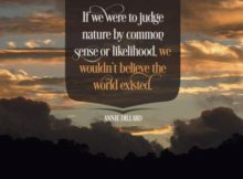 1317-Dillard Inspirational Graphic Quote Poster