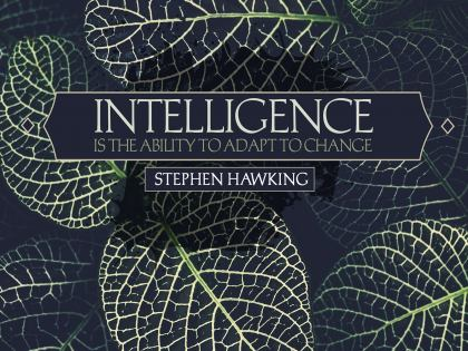 2502-Hawking Inspirational Graphic Quote Poster