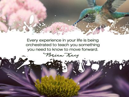 2509-Tracy Inspirational Graphic Quote Poster