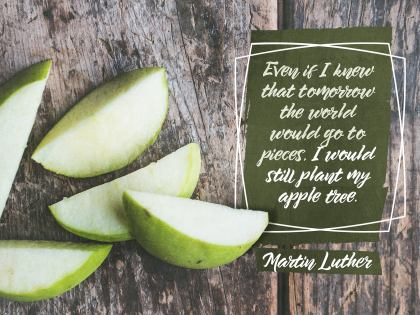 2510-Luther Inspirational Graphic Quote Poster