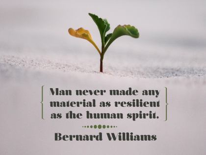 2532-Williams Inspirational Graphic Quote Poster