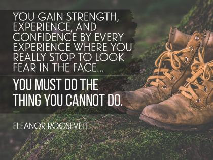 1806-Roosevelt Inspirational Quote Graphic