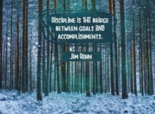Discipline Is The Bridge by Jim Rohn Inspirational Graphic Quote Poster