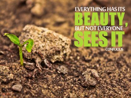 619-Confucius Inspirational Quote Poster