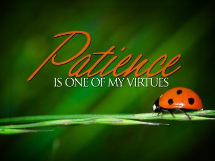 788-Patience Inspirational Graphic Quote Poster
