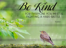 Be Kind by Plato Inspirational Graphic Quote Poster