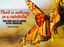 Going To Be A Butterfly by Buckminster Fuller Inspirational Graphic Quote