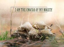 Creator Of My Reality (A Positive Affirmation) Inspirational Thought Graphic