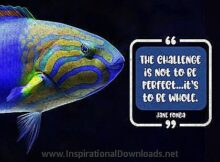 To Be Whole by Jane Fonda Inspirational Thought Graphic